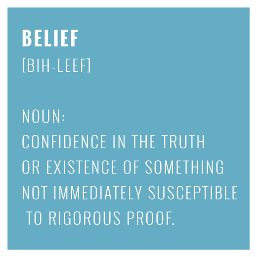 Belief - confidence in the truth or existence of something not immediately susceptible to rigorous proof