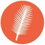 ash-wednesday-palm-leaf
