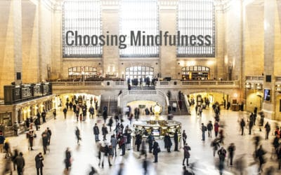Choosing Mindfulness