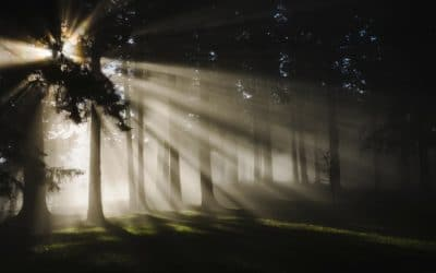 Five Ways to Find Light in the Darkness from Corrie ten Boom