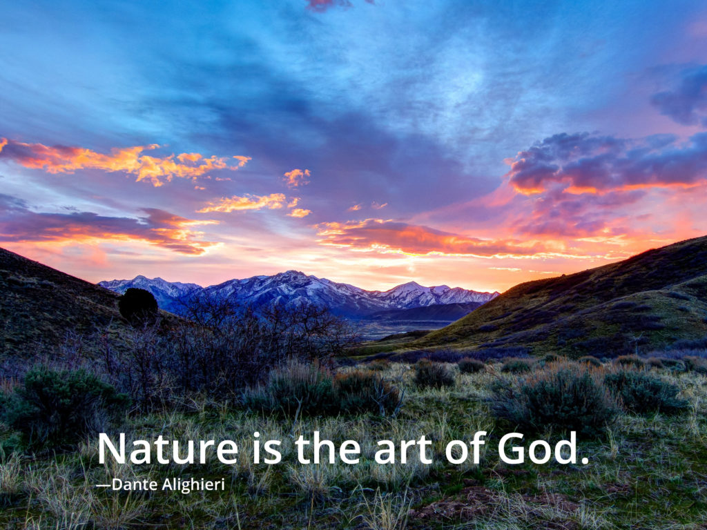 Faith And Nature